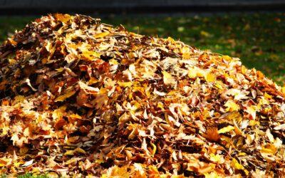 Jak zatočit s podzimním listím na zahradě? Ušetřete si čas s vysavači a fukary listí.