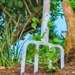Jaro v zahradě: harmonogram zahradnických prací