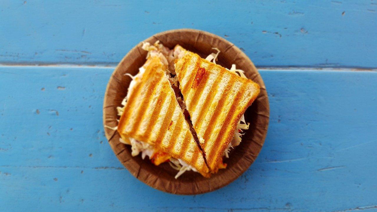 Jaký sendvičovač vybrat